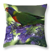 Beautiful Lorikeet Throw Pillow