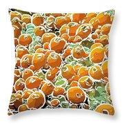 Beautiful Marine Plants 3 Throw Pillow