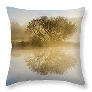 Beautiful Misty River Sunrise Throw Pillow