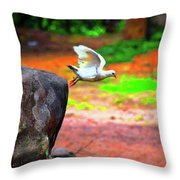 Beautiful Moment With A Bird Take Off , Wall Frame, Art Throw Pillow