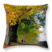 Beautiful Morning Walk In Autumn Throw Pillow