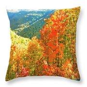 Beautiful Mother Nature  Throw Pillow