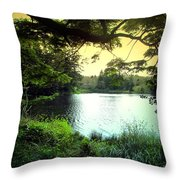 Beautiful Mountain Lake Throw Pillow