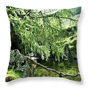 Beautiful Nature Throw Pillow