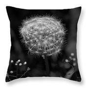 Beautiful Nuisance  Throw Pillow