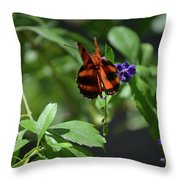 Beautiful Oak Tiger Butterfly On Purple Flowers Throw Pillow