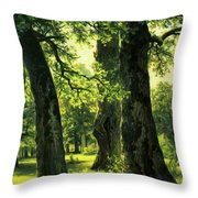 Beautiful Oak Trees Reach To The Skies Throw Pillow