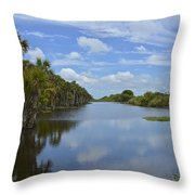 Beautiful Old Florida Throw Pillow