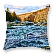 Beautiful Outdoors  Throw Pillow