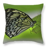 Beautiful Paper Kite Butterfly On A Green Leaf Throw Pillow
