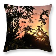 Beautiful Park Sunset View Trees Throw Pillow
