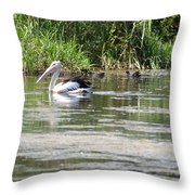 Beautiful Pelican Throw Pillow