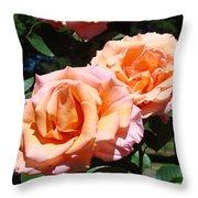 Beautiful Pink Orange Rose Flowers Garden Baslee Troutman  Throw Pillow