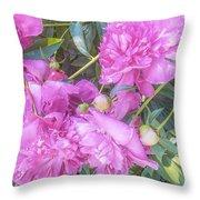 Beautiful Pink Peonies Throw Pillow