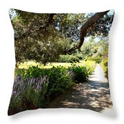 Beautiful Pond Path Throw Pillow