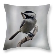 Beautiful Pose - Black-capped Chickadee Throw Pillow