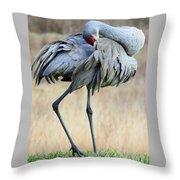 Beautiful Preening Sandhill Crane Throw Pillow