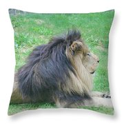 Beautiful Profile Of A Resting Lion In Green Grass Throw Pillow
