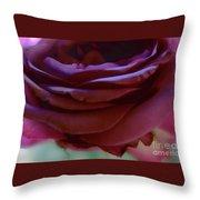 Beautiful Purple Rose Macro 2 Throw Pillow