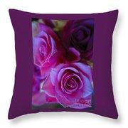 Beautiful Purple Roses 2 Throw Pillow