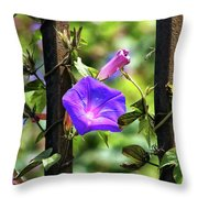 Beautiful Railroad Vine Flower II  Throw Pillow