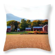 Beautiful Red Barn 1 Throw Pillow