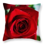 Beautiful Red Rose Abstract 3 Throw Pillow