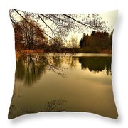 Beautiful Reflection In The Evening Hours Throw Pillow
