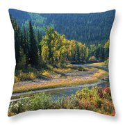 Beautiful River Bottom In Vivid Autumn Colors Throw Pillow