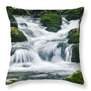 Beautiful River In Forest Throw Pillow