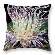 Beautiful Sea Anemone 1 Throw Pillow