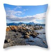 Beautiful Sea View Throw Pillow