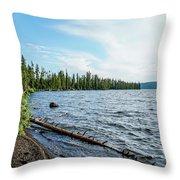 Beautiful Shoreline Throw Pillow