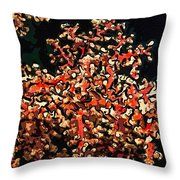 Beautiful Soft Coral 3 Throw Pillow