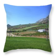 Beautiful Spanish Countryside Throw Pillow