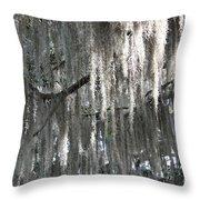 Beautiful Spanish Moss Throw Pillow