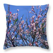 Beautiful Spring. Blooming Tree 1 Throw Pillow