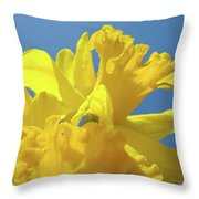 Beautiful Spring Daffodil Bouquet Flowers Blue Sky Art Prints Baslee Troutman Throw Pillow