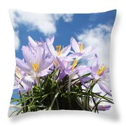 Beautiful Spring Flower Blossom In Sky Background Throw Pillow