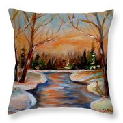 Beautiful  Spring Thaw Throw Pillow