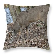 Beautiful Stag Throw Pillow