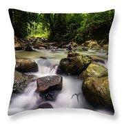 Beautiful Stream In Western Ghats Region Of Karnataka India Throw Pillow