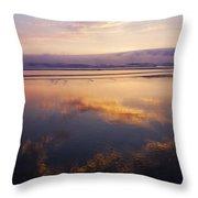 Beautiful Sunset Along Oregon Coast Throw Pillow