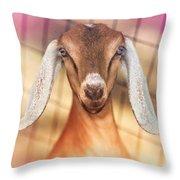 Beautiful Taffy Throw Pillow