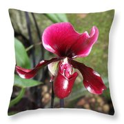 Beautiful Temptation 2 Throw Pillow