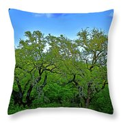 Beautiful Texas View 2 Throw Pillow