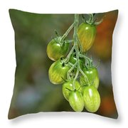 Beautiful Tomatoes Throw Pillow