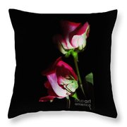 Beautiful Two Tone Roses 2 Throw Pillow