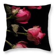 Beautiful Two Tone Roses 4 Throw Pillow