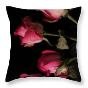 Beautiful Two Tone Roses 6 Throw Pillow